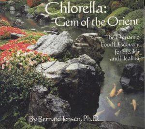chlorella-gastrite-estomago