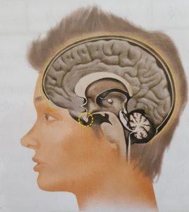 glandula-pineal-depressao