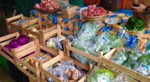 organicos-londrina-feira