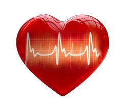 dimalato magnesio hipertensao arterial